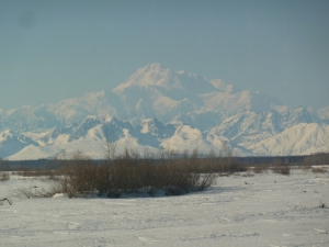 View of Denali-Ski Train