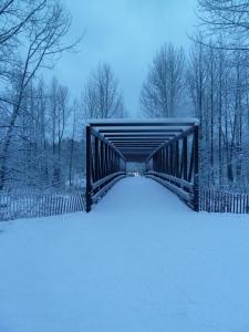 Bicentennial Bridge