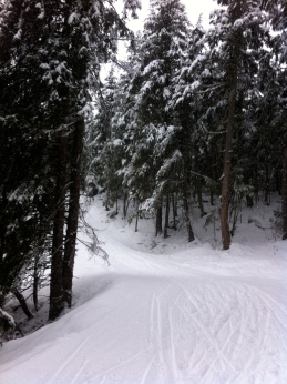 Girdwood Nordic Loop
