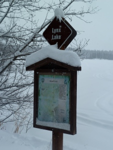 Lynx Lake-there is a sign!