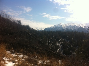 McHugh Trail View, Turnagain Arm, AK