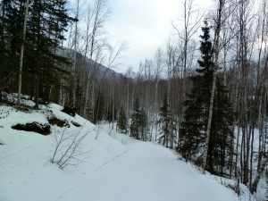 Coyote Trail, Mirror Lake