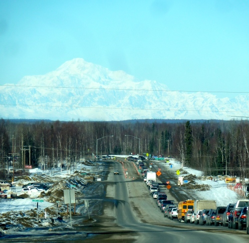 Denali and the Traffic!